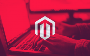 Why Magento is the right platform for your B2B website blog article